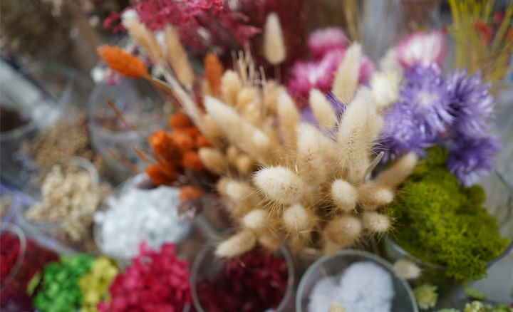 Close-up of bristle grass and other flower bouquets